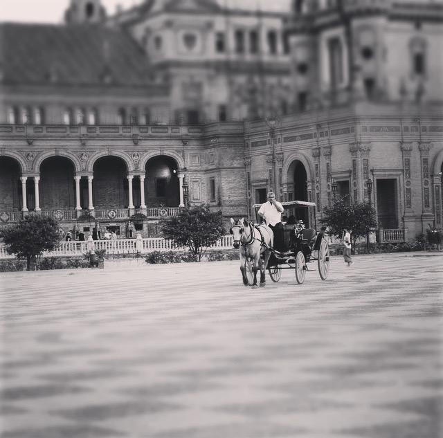 Sevilla- und wie viele Hochzeiten hier gefeiert werden.. für mich wäre das aber glaube ich ein bisschen zu Öffentlich