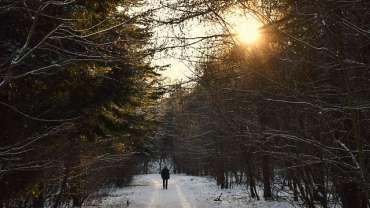 Teufelsberg- Ausflugsziel für die ganze Familie