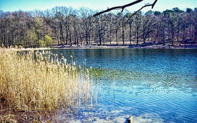 Der Grunewaldsee- ist bekanntes immer langweilig?